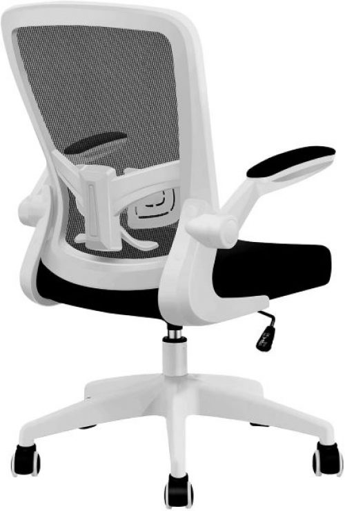 FelixKing Ergonomic Desk Chair with Adjustable Height and Lumbar Support Swivel Lumbar Support Desk Computer Chair with Flip up Armrests for Conference Room